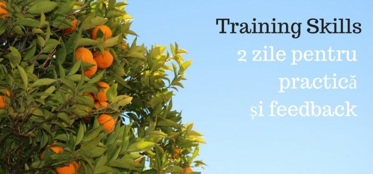 Training Skills Timișoara- 2 zile pentru practică și feedback