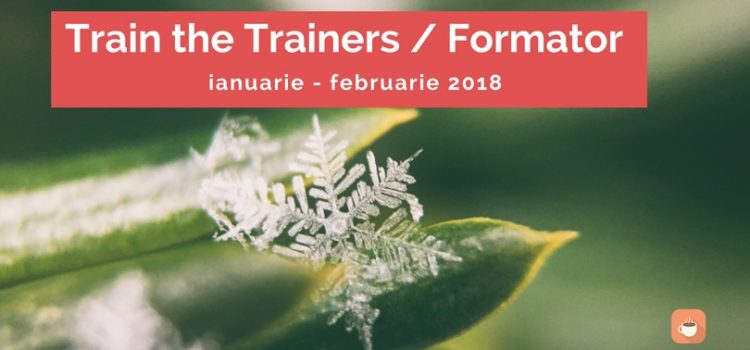Train the Trainers / Formator ianuarie – februarie 2018