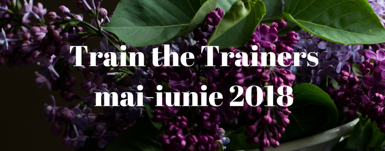 Train the Trainers / Formator mai-iunie 2018